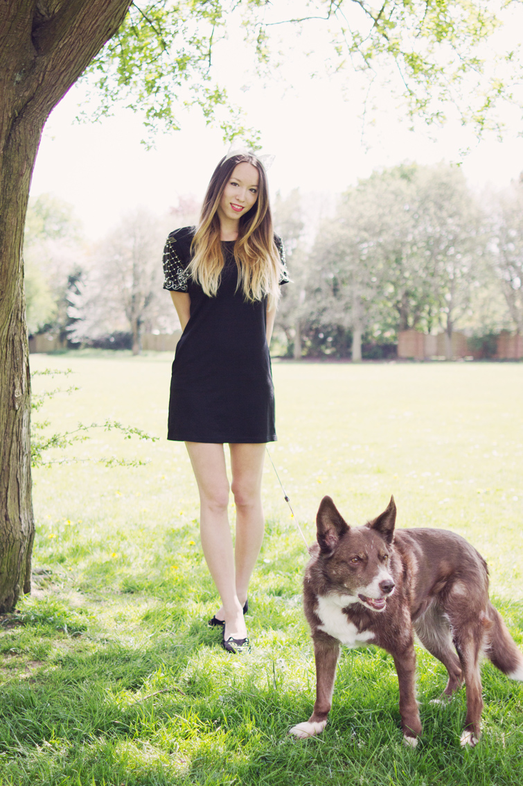 Fashion blogger with dog