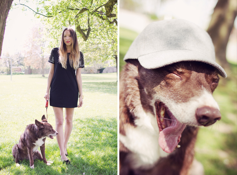 UK fashion blogger with pet dog