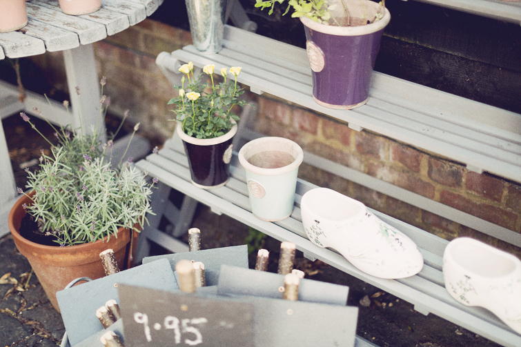 Flower pots photo