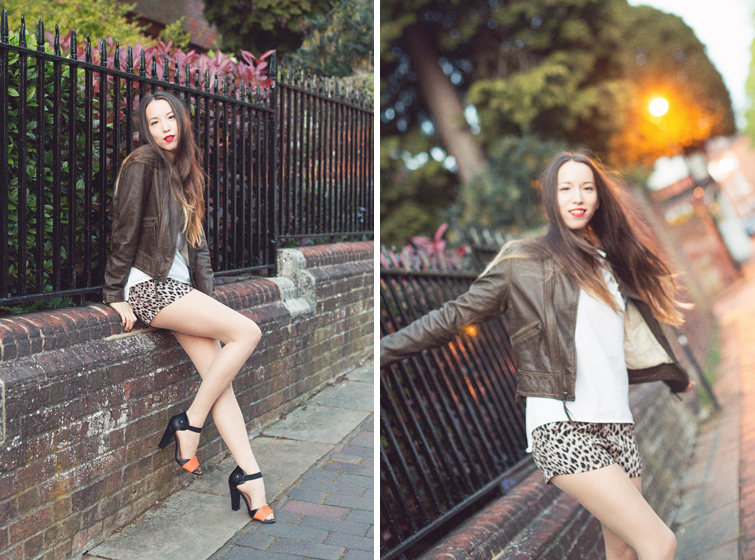 Girl in the Lens | Leather jacket and leopard print shortsGirl in the Lens | Leather jacket and leopard print shorts